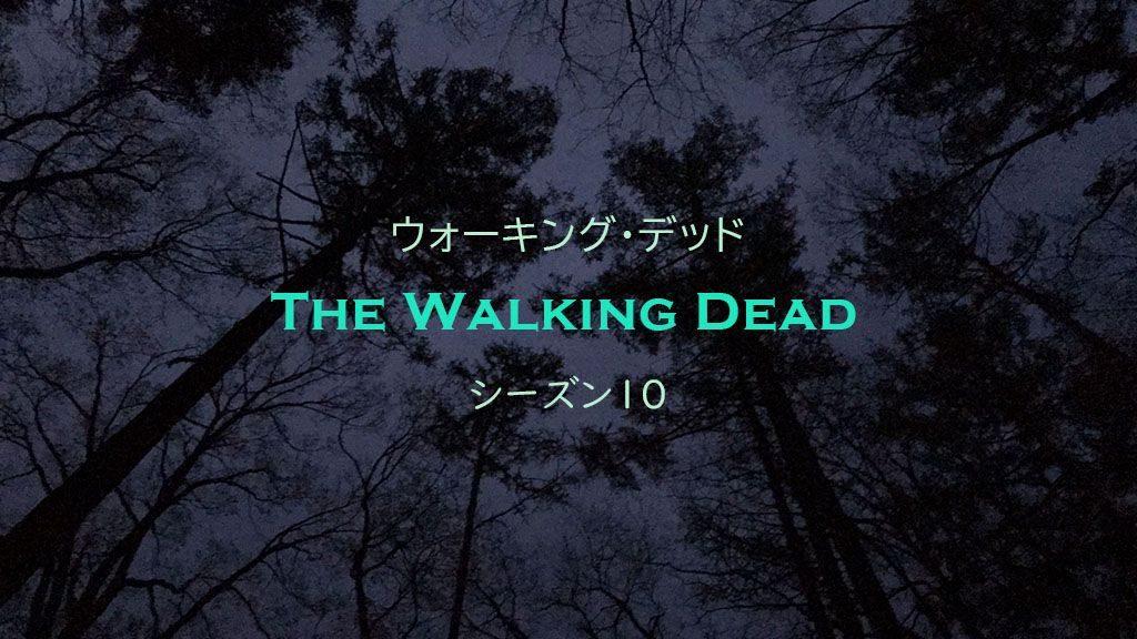 ウォーキング・デッド, The Walking Dead, シーズン10
