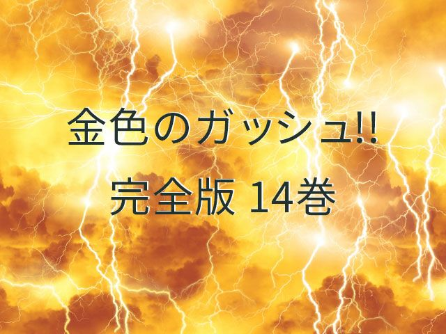 金色のガッシュ!! 完全版 14